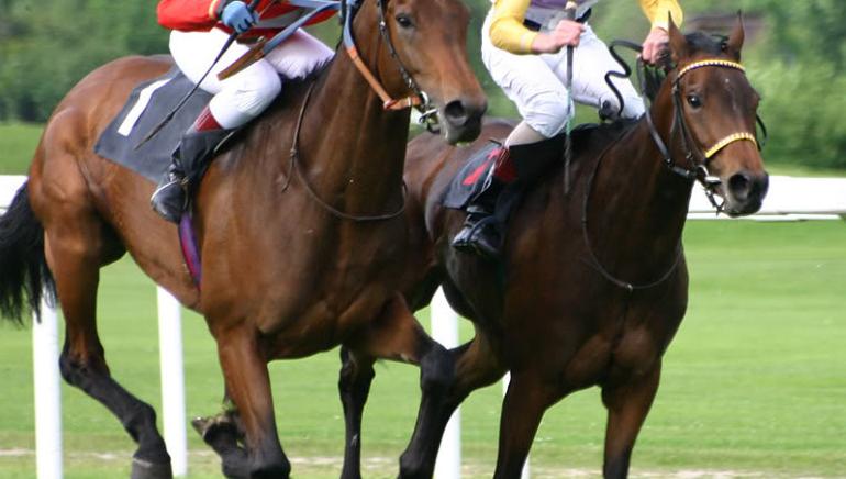 Luckia Sportsbook amplía su portafolio con deportes virtuales